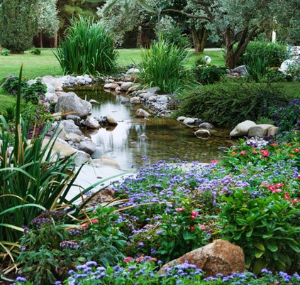 Water Garden Cleaning Repair Rochester Syracuse NY PA